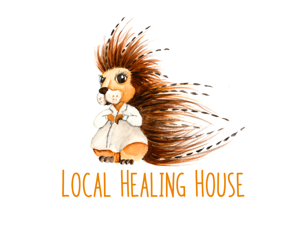 Acupuncture and massage log for The Local Healing House